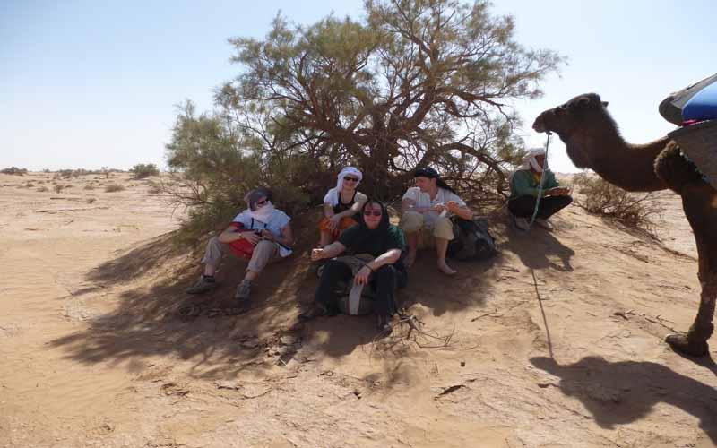 Sahara-relax-the shade from tree-against-the-sun-5-days-trek