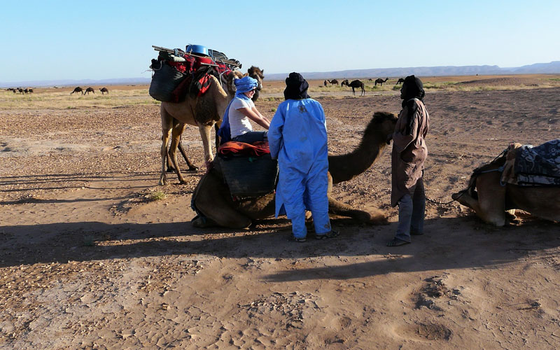 5 days Camel Trek in Morocco desert