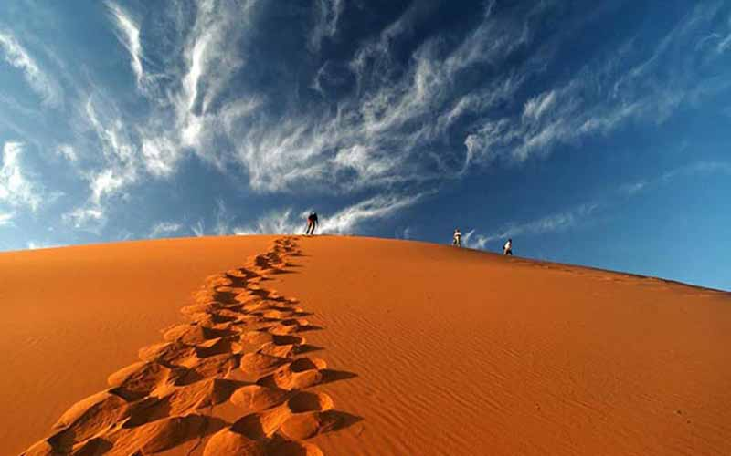 5 days camel trek - desert tour and excursion